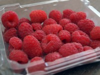 Absorbent pads increase the shelf life of berries